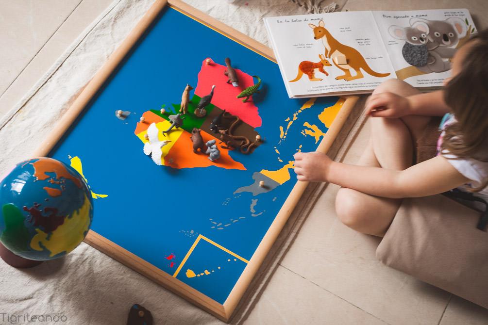 Continentes Montessori Safari-11_mini