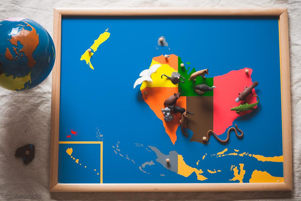 Continentes Montessori Safari-12_mini