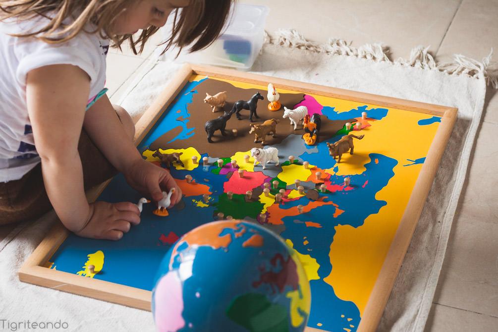 Continentes Montessori Safari-23_mini