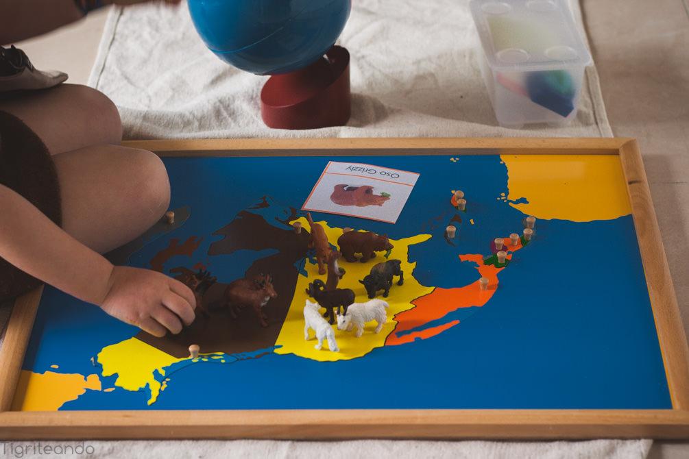 Continentes Montessori Safari-3_mini