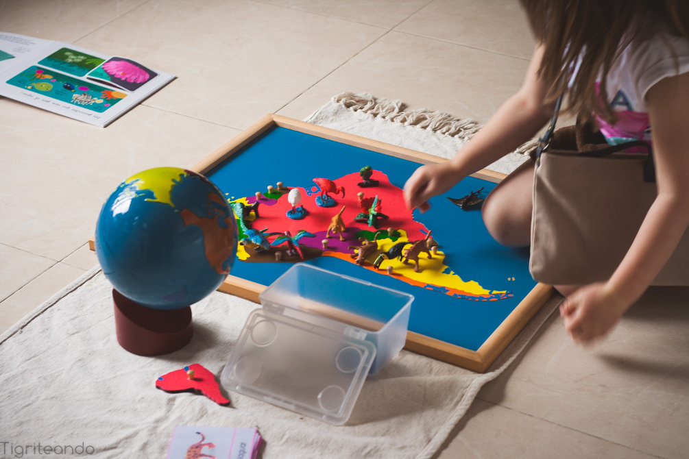 Continentes Montessori Safari-6_mini