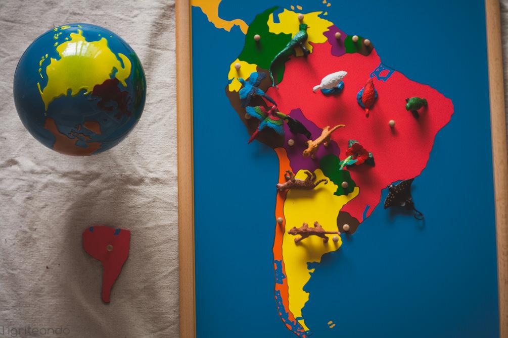 Continentes Montessori Safari-8_mini