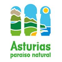 Logo_APN_blanco_web