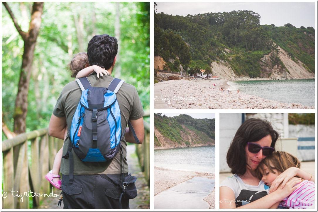 Playa Concha Artedo