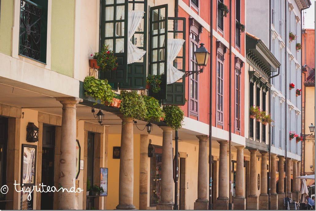 Oviedo-4[3]