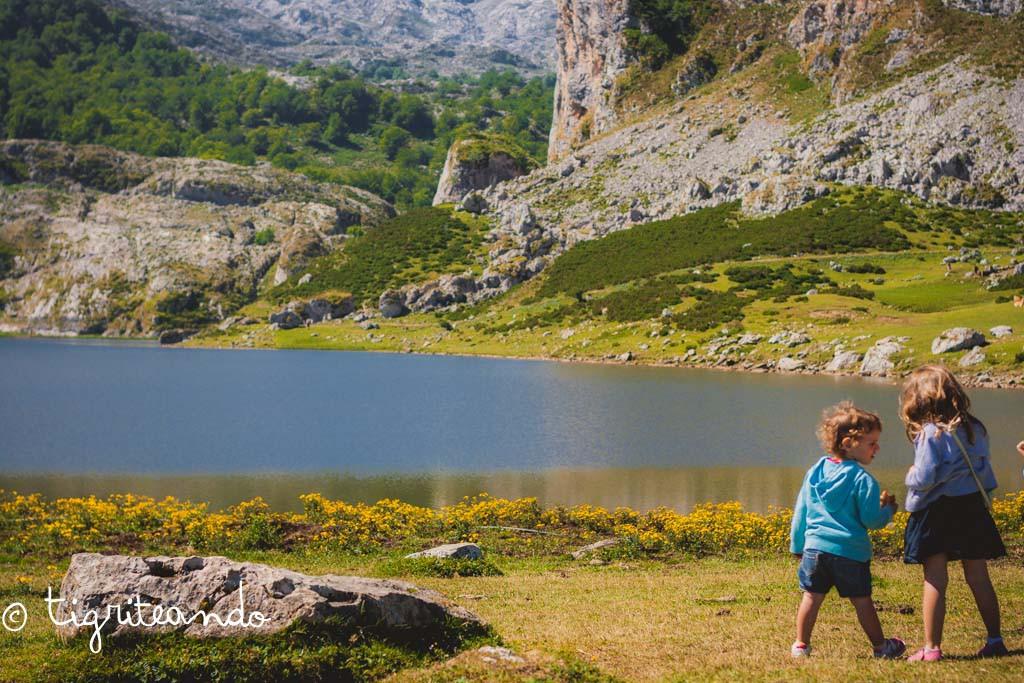 Lagos Covadonga-6_1