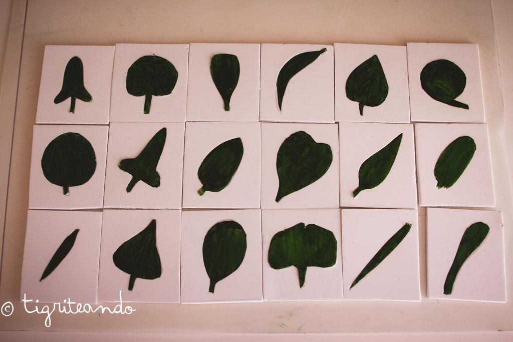 gabinete botanica montessori-2-2