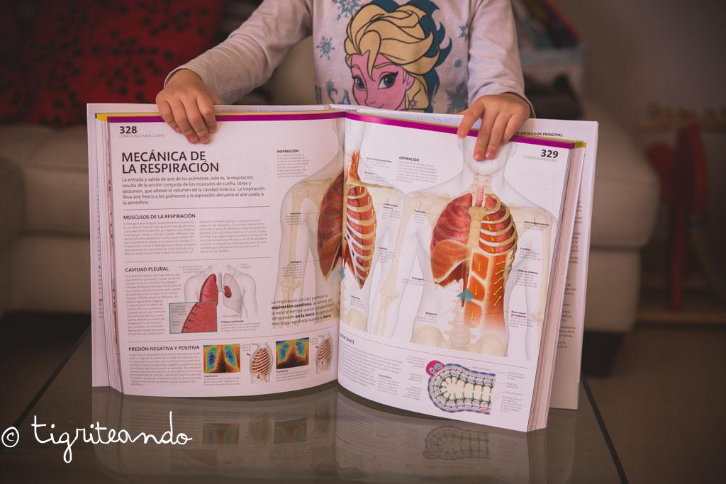 10 Libros y 10 materiales sobre el cuerpo humano - Tigriteando