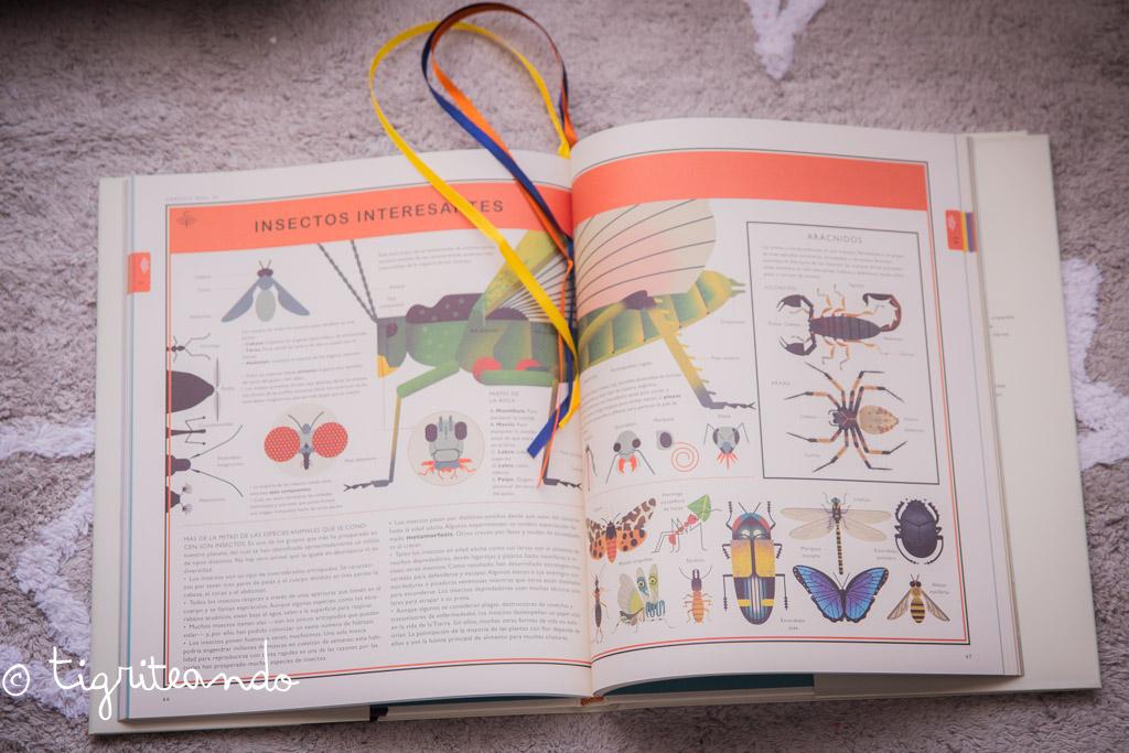 libros-conocimiento-navidad-11