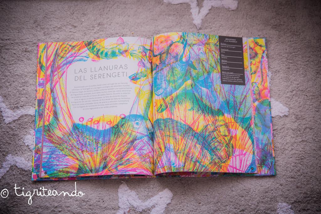 libros-conocimiento-navidad-4