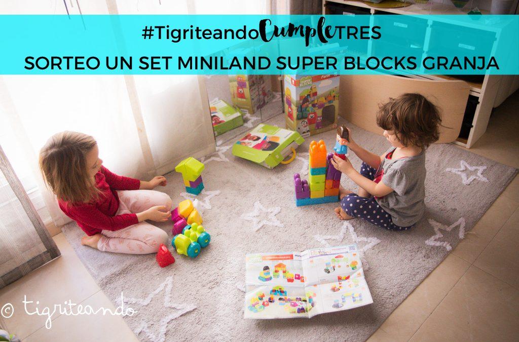 Super Blocks de Miniland