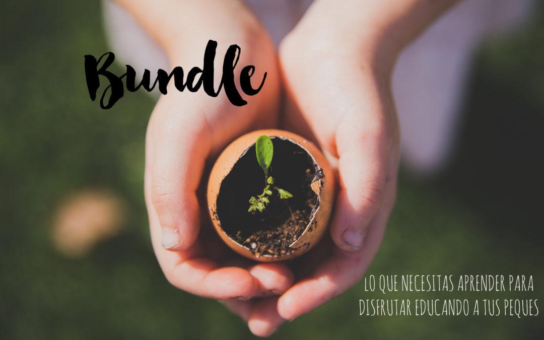 Todo lo que siempre-desde ayer- quisiste saber sobre el Bundle.